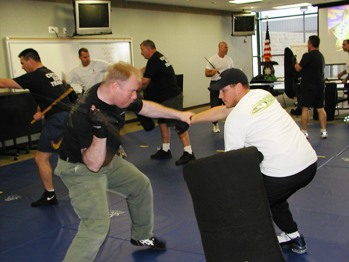 Impact Weapons Instructor: Integrated Combatives Problem-Solving TRAIN-THE-TRAINER